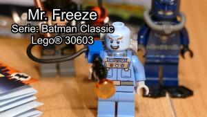 lego30603